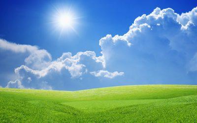 Energies renovables i eficiència energètica, encarregades de la descarbonització
