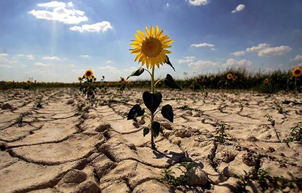 Andalusia es prepara per la seva llei de canvi climàtic