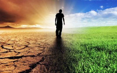 Un grupo de más de 15.000 científicos alerta sobre  el cambio climático