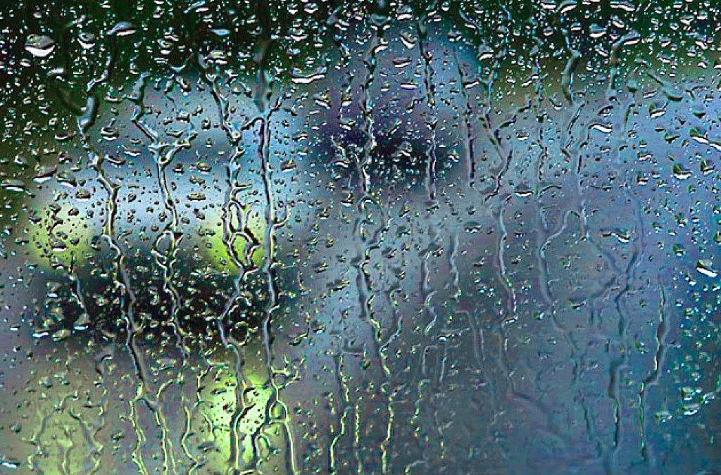 El vent i la pluja aconsegueixen reduir les emissions de CO2 en l'electricitat en un 14,31%