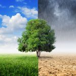 L'Agència Europea de Medi ambient desvela el cost monetari del canvi climàtic a Europa