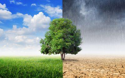 La Agencia Europea de Medio ambiente desvela el coste monetario del cambio climático en Europa