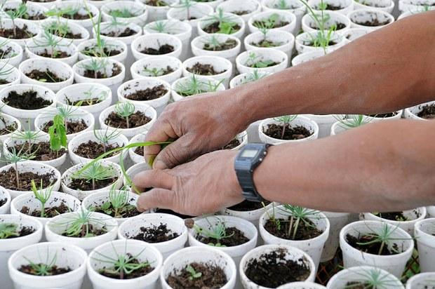 """Ecological Challenge, un concurs per a finançar projectes """"que canviïn el món"""""""