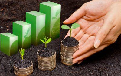 ECOFISCALITAT: 13 nous impostos per aturar l'escalfament global
