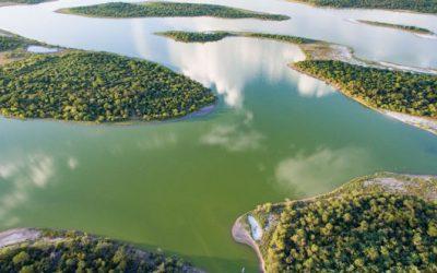 Per què els aiguamolls poden frenar l'escalfament global?