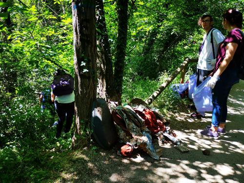 Limpieza de bosque Bellaterra