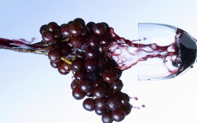 Fer front al canvi climàtic per salvar el sector vinícola
