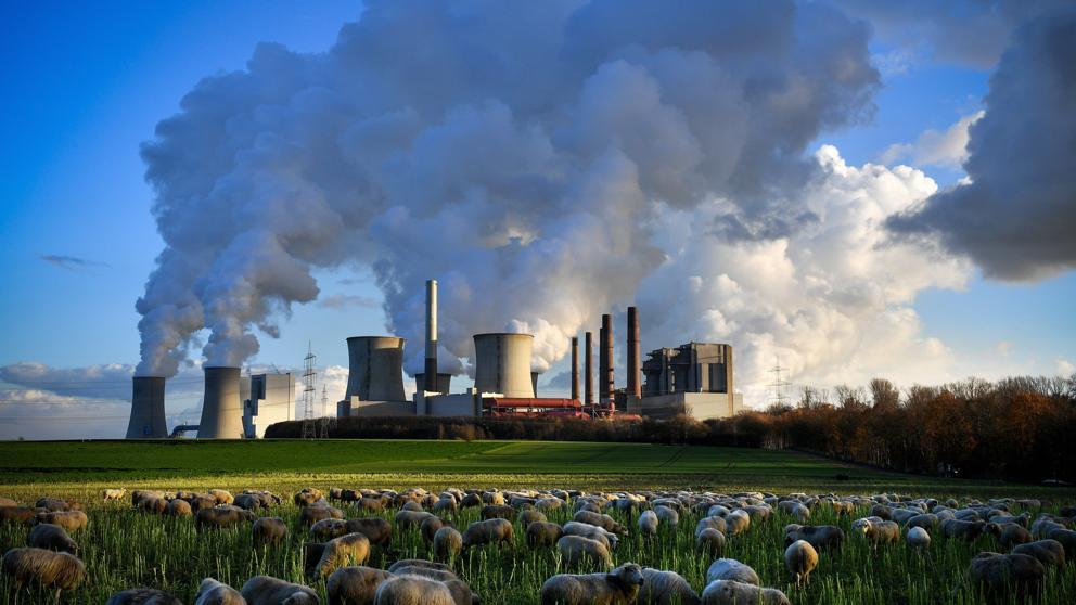 Les emissions de CO₂ es redueixen aquest estiu gràcies a la COVID-19