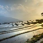 La transición a la Agroecología es clave para hacer frente al cambio climático