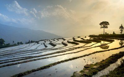 La transició a l'Agroecologia és clau per fer front al canvi climàtic
