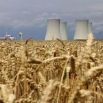 ¿Cómo afecta el cambio climático al valor nutricional de las plantas?