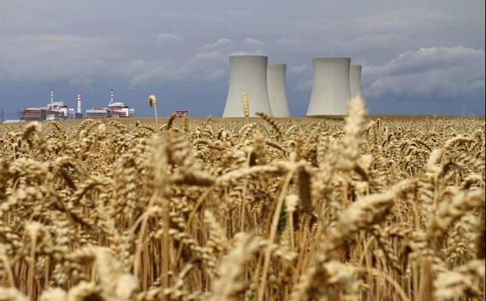 Com afecta el canvi climàtic al valor nutricional de les plantes?