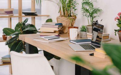 Como hacer una oficina más sostenible y COVID free