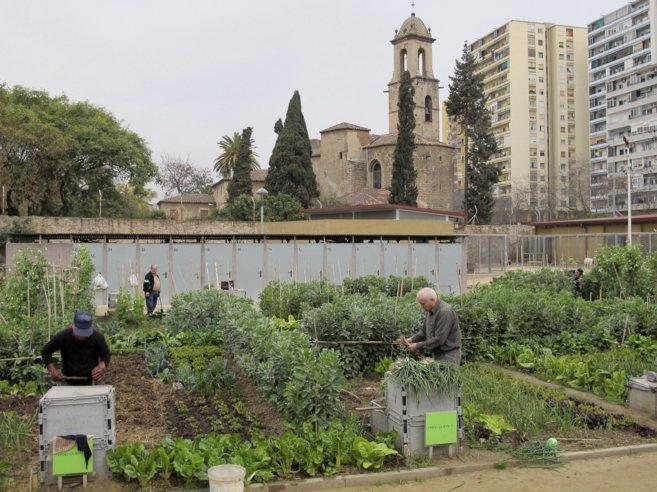 L'hort urbà ajuda a construir ciutats més sostenibles