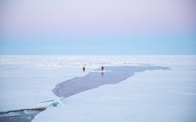 Día de la Tierra: El cambio climático está poniendo en peligro la Tierra y sus habitantes