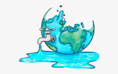 Quina relació existeix entre la petjada hídrica i la petjada de carboni?