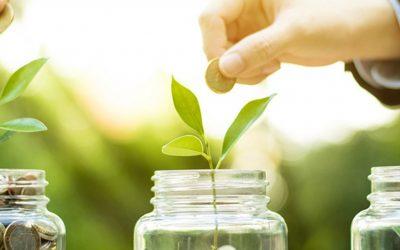 Els bons verds contribueixen a la transició ecològica
