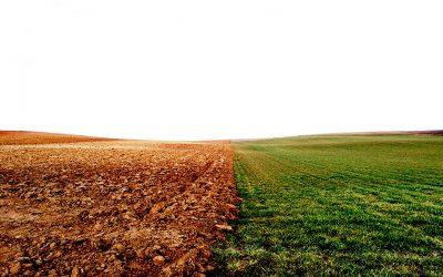 Quant costa el canvi climàtic als espanyols actualment?