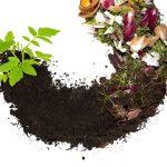 Taller de compostaje en Bellaterra